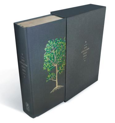 Life Application Study Bible NLT - Tyndale (Producer)