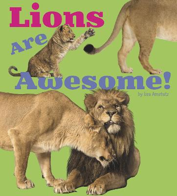 Lions Are Awesome! - Amstutz, Lisa J.