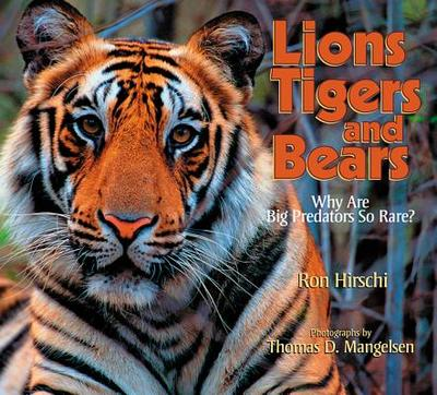 Lions, Tigers, and Bears: Why Are Big Predators So Rare? - Hirschi, Ron, and Mangelsen, Thomas D (Photographer)