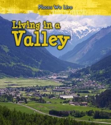 Living in a Valley - Labrecque, Ellen