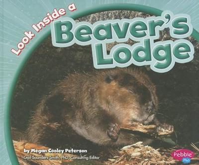 Look Inside a Beaver's Lodge - Peterson, Megan C