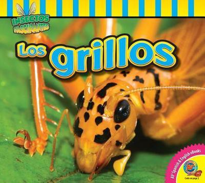Los Grillos (Crickets) - Willis, John, Professor
