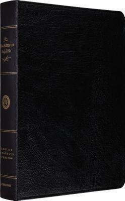 MacArthur Study Bible-ESV - MacArthur, John (Commentaries by)