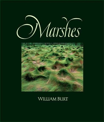 Marshes: The Disappearing Edens - Burt, William