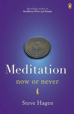 Meditation Now or Never - Hagen, Steve