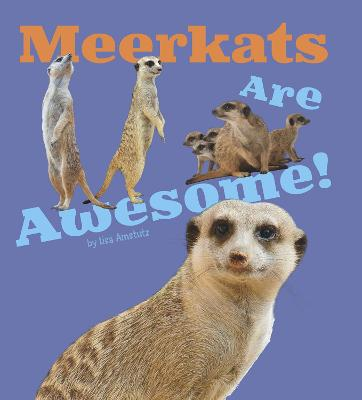 Meerkats Are Awesome! - Amstutz, Lisa J.