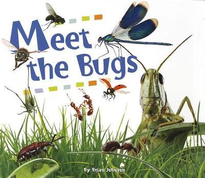 Meet the Bugs - Johnson, Brian