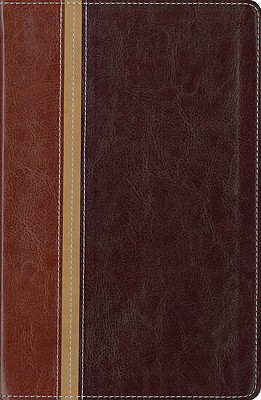 Message Parallel Study Bible-PR-NIV/MS-Numbered Personal Size - Zondervan Bibles (Creator)