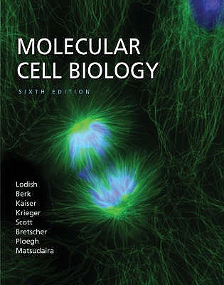 Molecular Cell Biology - Lodish, Harvey, and Berk, Arnold, and Kaiser, Chris A.