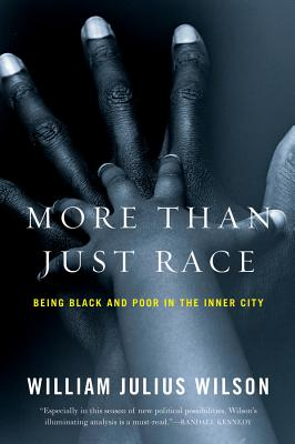More Than Just Race: Being Black and Poor in the Inner City - Wilson, William Julius