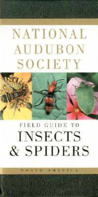 National Audubon Society Field Guide to North American Insects and Spiders - Milne, Lorus, and Rayfield, Susan (Illustrator), and Milne, Margery