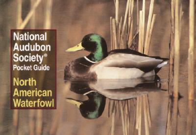 National Audubon Society Pocket Guide to Waterfowl - Walton, Richard K, and National Audubon Society