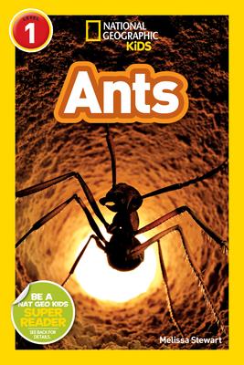 National Geographic Readers: Ants - Stewart, Melissa