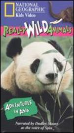 National Geographic Really Wild Animals: Adventures in Asia