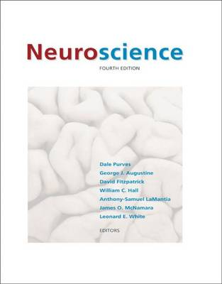 Neuroscience - Augustine, George J (Editor), and Purves, Dale (Editor), and Fitzpatrick, David (Editor)