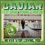 Never Stop Loving You