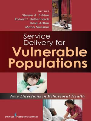 New Directions in Human Services Delivery: Strategies for Vulnerable Populations - Estrine, Steven (Editor), and Hettenbach, Robert (Editor), and Arthur, Heidi (Editor)