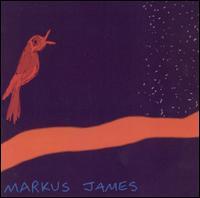 Nightbird - Markus James