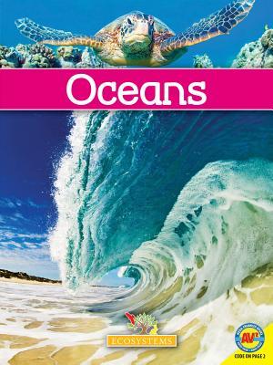 Oceans - Hudak, Heather C