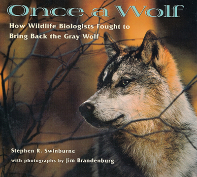 Once a Wolf: How Wildlife Biologists Fought to Bring Back the Gray Wolf - Swinburne, Stephen, and Brandenburg, Jim (Photographer)
