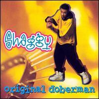 Original Doberman - Shaggy
