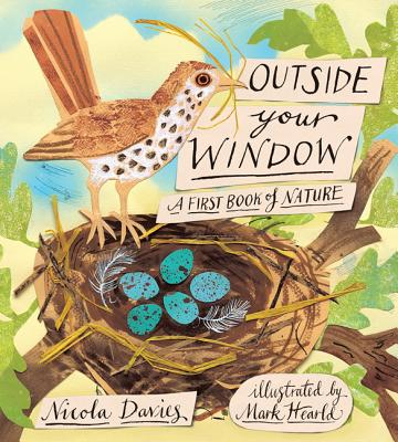 Outside Your Window: A First Book of Nature - Davies, Nicola
