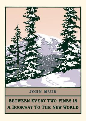 Pine by John Muir (Boxed): Boxed Set of 6 Cards - Smith, Bruce, and Yamamoto, Yoshiko