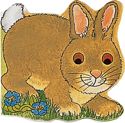 Pocket Bunny -