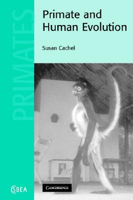 Primate and Human Evolution - Cachel, Susan