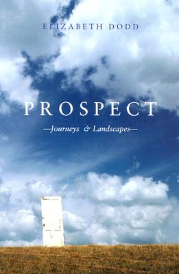 Prospect - Dodd, Elizabeth Caroline