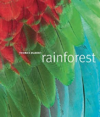 Rainforest - Marent, Thomas, and Morgan, Ben