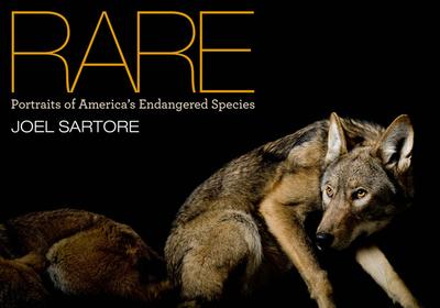 Rare: Portraits of America's Endangered Species - Sartore, Joel