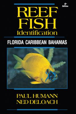 Reef Fish Identification: Florida Caribbean Bahamas - Humann, Paul, and Deloach, Ned