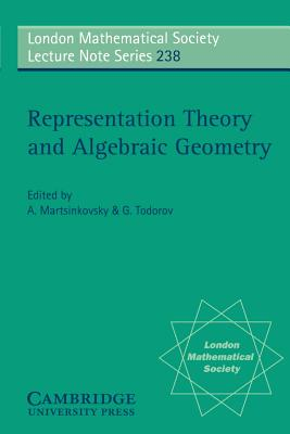 Representation Theory and Algebraic Geometry - Martsinkovsky, A (Editor)