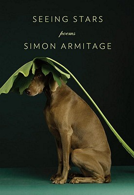 Seeing Stars - Armitage, Simon