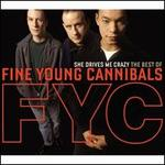 She Drives Me Crazy: The Best of Fine Young Cannibals