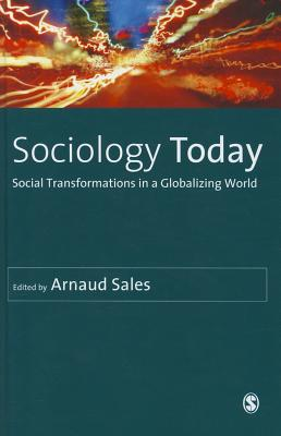 Sociology Today: Social Transformations in a Globalizing World - Sales, Arnaud (Editor)