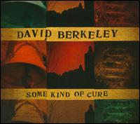 Some Kind Of Cure - David Berkeley