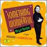 Something Wonderful: Bryn Terfel Sings Rodgers & Hammerstein - Bryn Terfel
