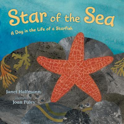 Star of the Sea: A Day in the Life of a Starfish - Halfmann, Janet