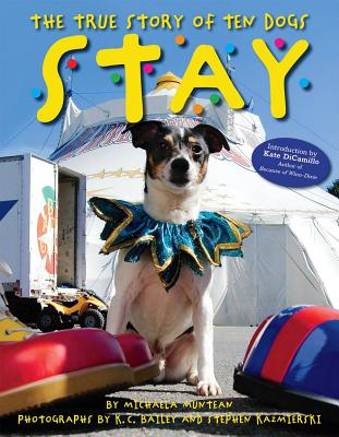 Stay: The True Story of Ten Dogs - Muntean, Michaela