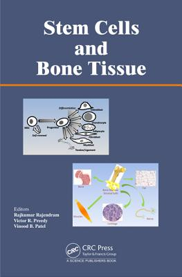 Stem Cells and Bone Tissue - Rajendram, Rajkumar (Editor), and Preedy, Victor R (Editor), and Patel, Vinood (Editor)