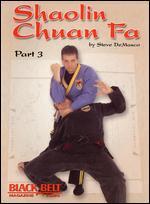 Steve Demasco: Shaolin Chuan Fa, Part 3 -