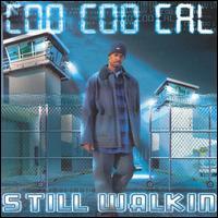 Still Walkin' - Coo Coo Cal