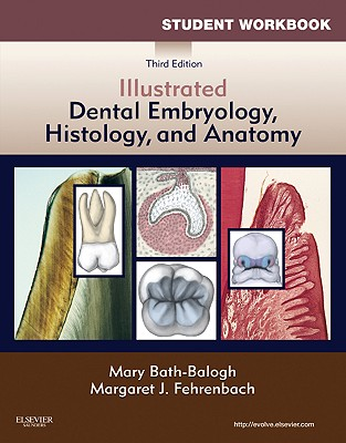 Student Workbook for Illustrated Dental Embryology, Histology and Anatomy - Bath-Balogh, Mary, and Fehrenbach, Margaret J