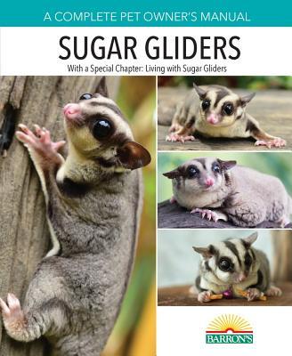 Sugar Gliders - Wightman, Caroline