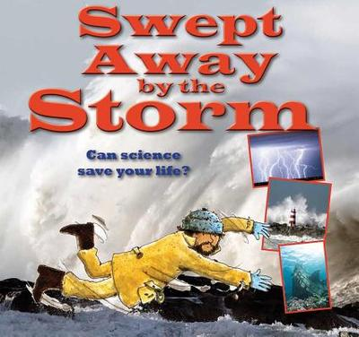 Swept Away by the Storm - Bailey, Gerry
