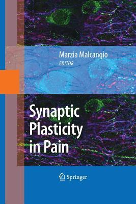 Synaptic Plasticity in Pain - Malcangio, Marzia (Editor)