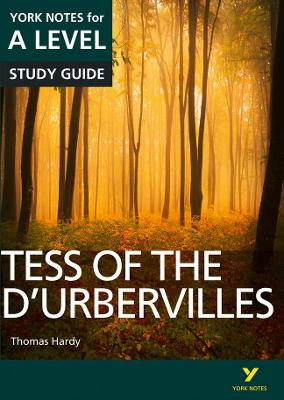 Tess of the D'Urbervilles: York Notes for A-level - Sayer, Karen, and Palmer, Beth