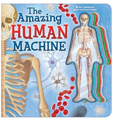 The Amazing Human Machine: Book with Acetate Body System Cards - Froeb, Lori C